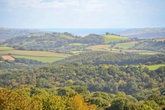 The Devon countryside, Poppy Developments